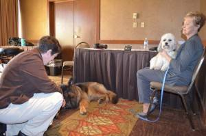 2016 conf pet therapy